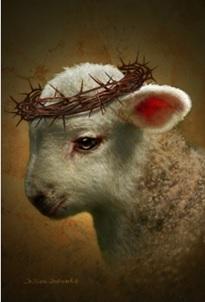 God's Lamb